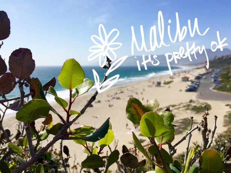 malibu-point-dume-lookout